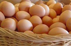 Mandje eieren